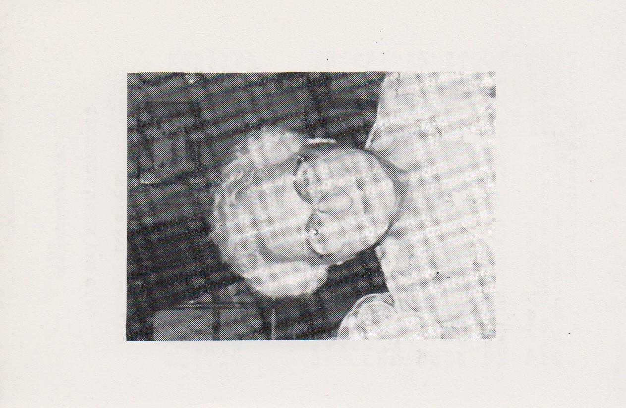 Bidprentje Gertruda MariaGaal